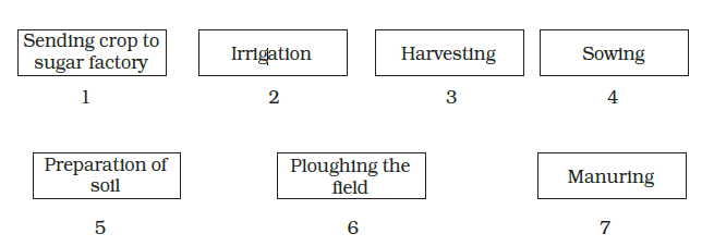 NCERT Solutions For Class 8 Science Chapter 1-sol-1