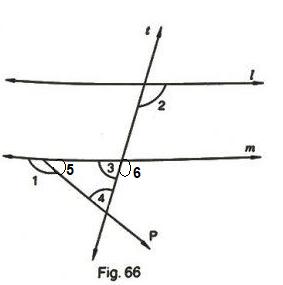 RD Sharma Class 7 Maths Exercise 14.2 Ans 9