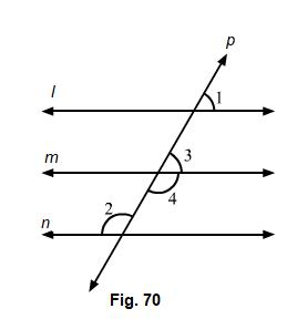 RD Sharma Class 7 Maths Exercise 14.2 Qs 13