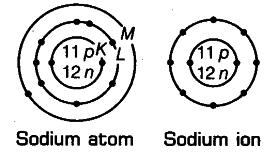 sodium atom and sodium ion
