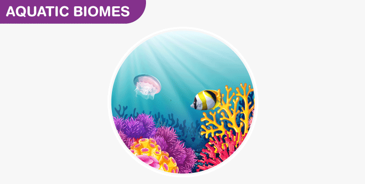 Aquatic-biomes
