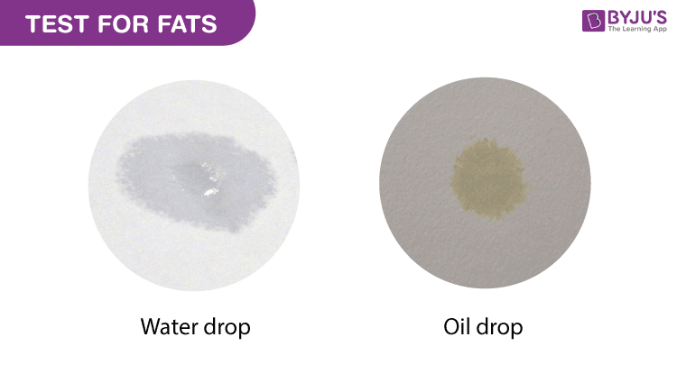 Test-for-Fats