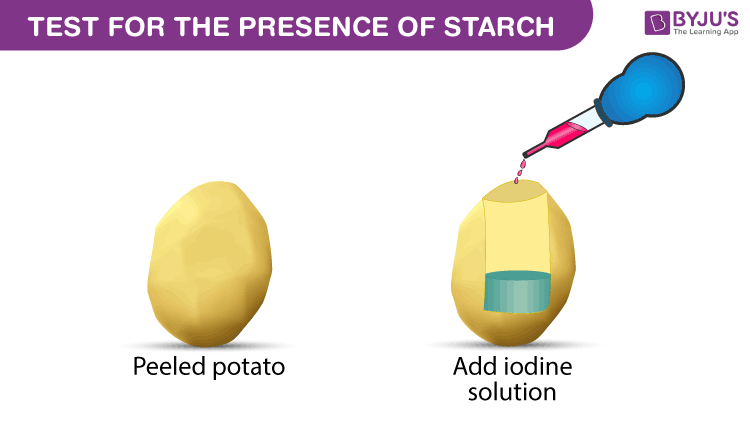 Test-for-the-presence-of-starch
