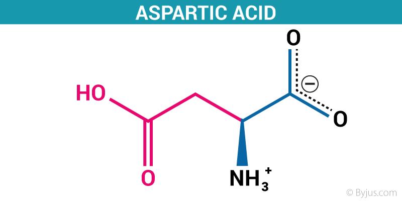 Aspartic Acid Structure