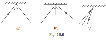 NCERT Exemplar Class 8 Science chapter 16 Solutions fig 12
