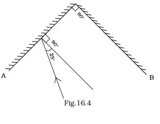 NCERT Exemplar Class 8 Science chapter 16 Solutions fig 4