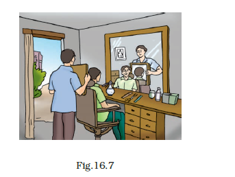 NCERT Exemplar Class 8 Science chapter 16 Solutions fig 8