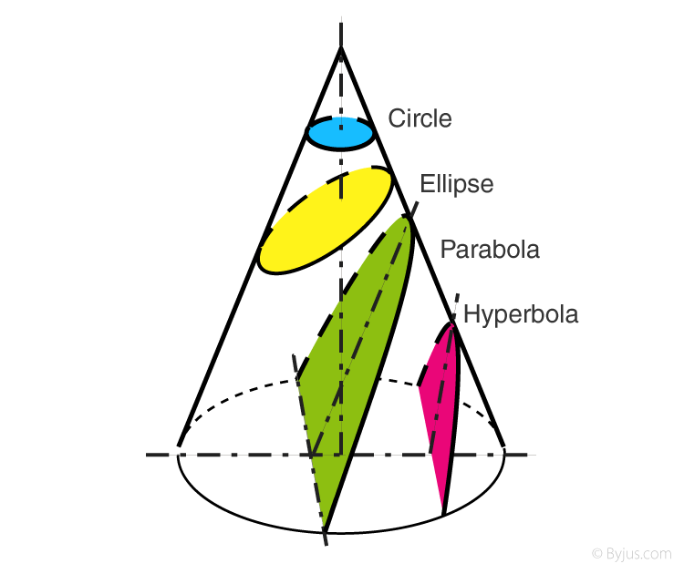 Cross Section of Cone