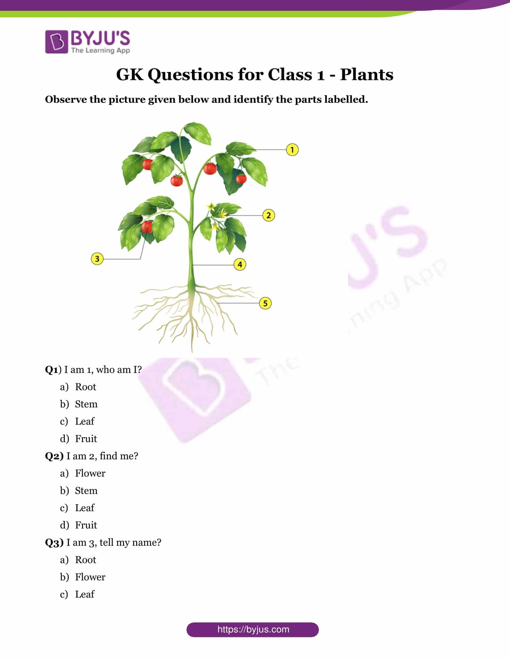 GK Questions for Class 1 - Plants