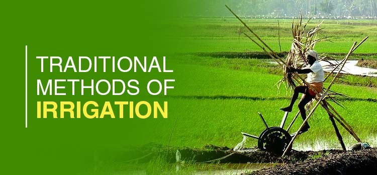 Traditional Methods of Irrigation