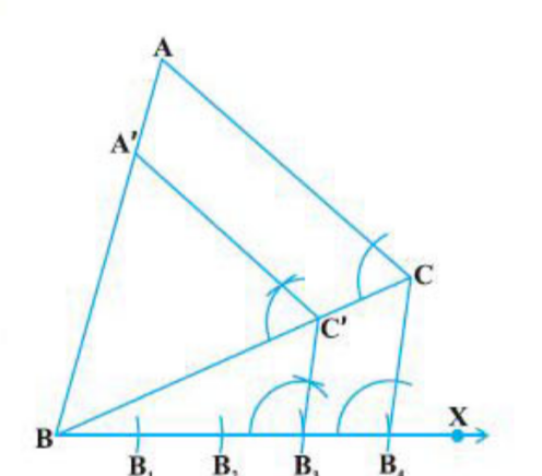 CBSE Board Class 10 Maths Chapter 11 Construction Objective Question 6 Image