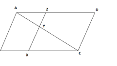 cbse class 10 maths chapter 6 question 6