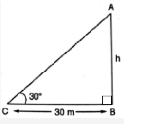 CBSE Class 10 Maths Chapter 9 Applications of Trigonometry Question 7 Solution - 1