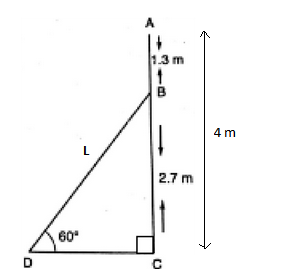 CBSE Class 10 Maths Chapter 9 Applications of Trigonometry Question 9 Solution Image 1