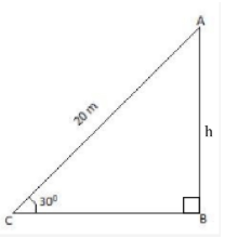 CBSE Class 10 Maths Chapter 9 Applications of Trigonometry Question 10 Solution Image 1