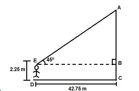 CBSE Class 10 Maths Chapter 9 Applications of Trigonometry Question 11 Solution Image 1