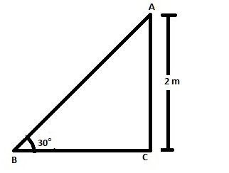 CBSE Class 10 Maths Chapter 9 Applications of Trigonometry Question 14 Solution Image 1