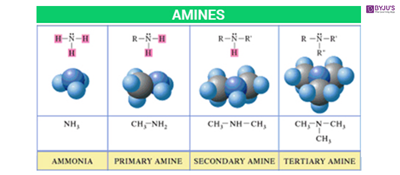 Classification of Amines