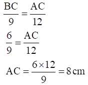 NCERT Exemplar Solutions Class 10 Maths Chapter 6 Ex. 6.3-13