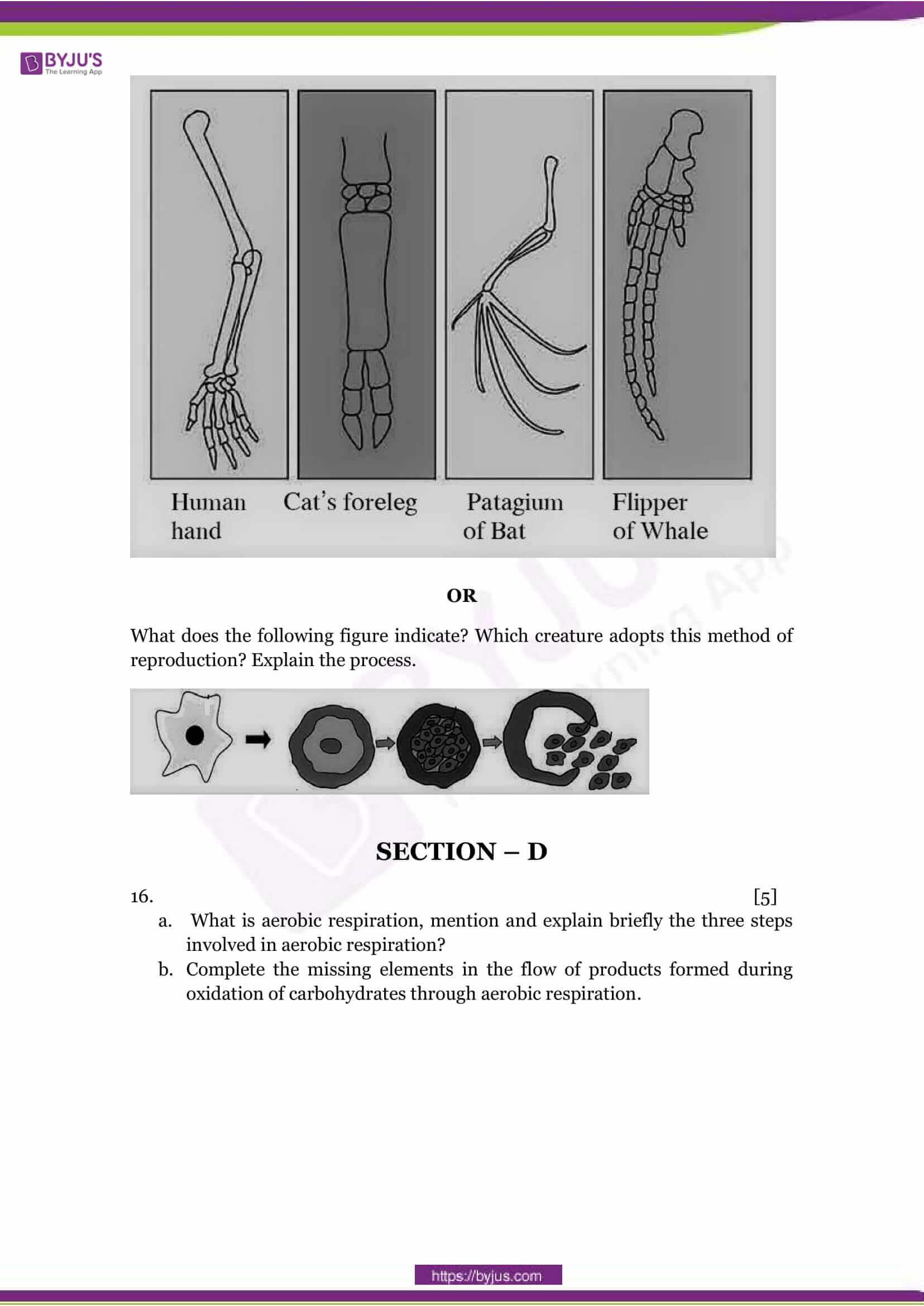 CBSE Class 10 Science Sample Paper Set 1-5