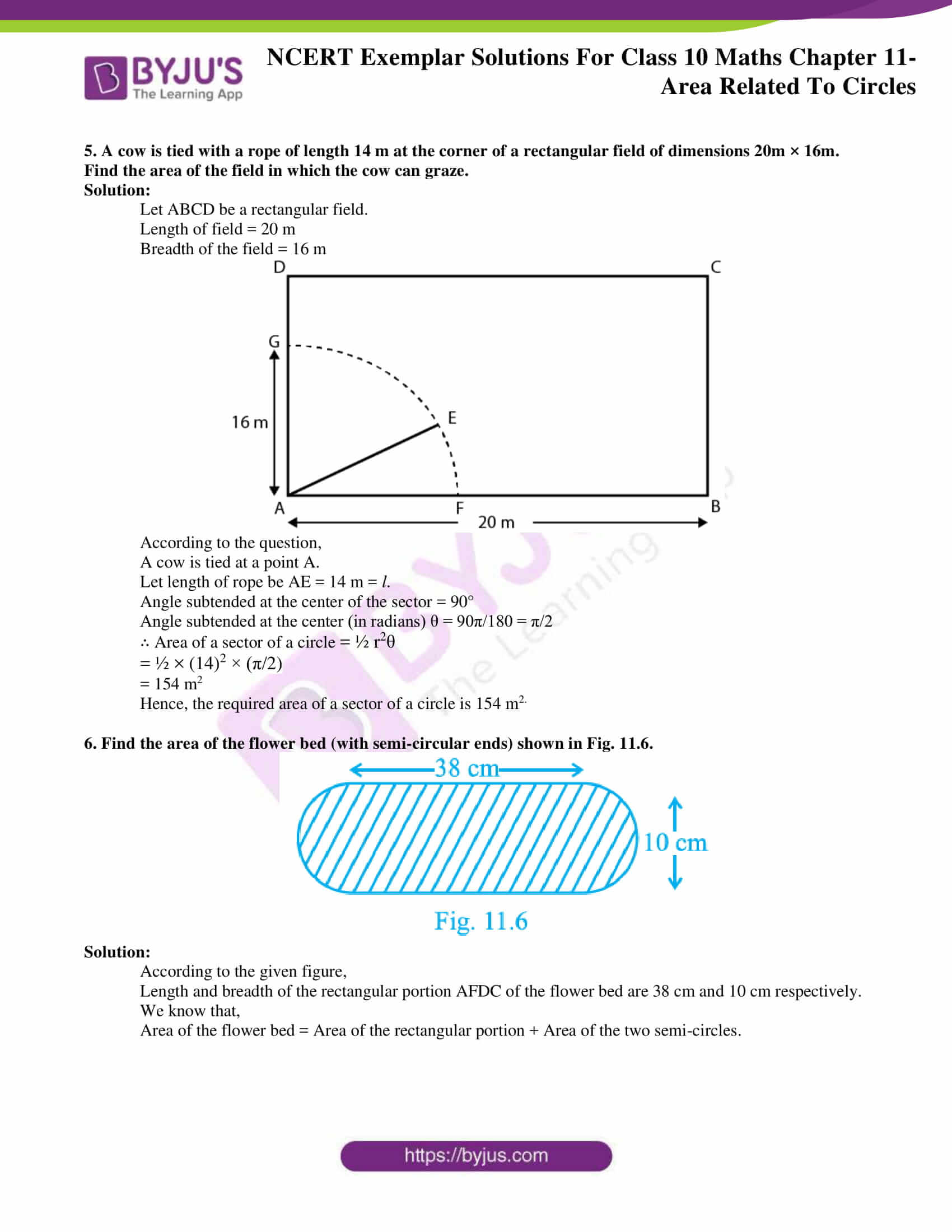 Ncert Exemplar solution class 10 maths 11