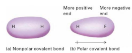 What are polar and non polar covalent compounds