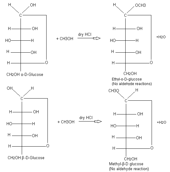 Glycoside formation