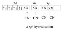 What Is The Hybridisation For Ni Cn 4 2?