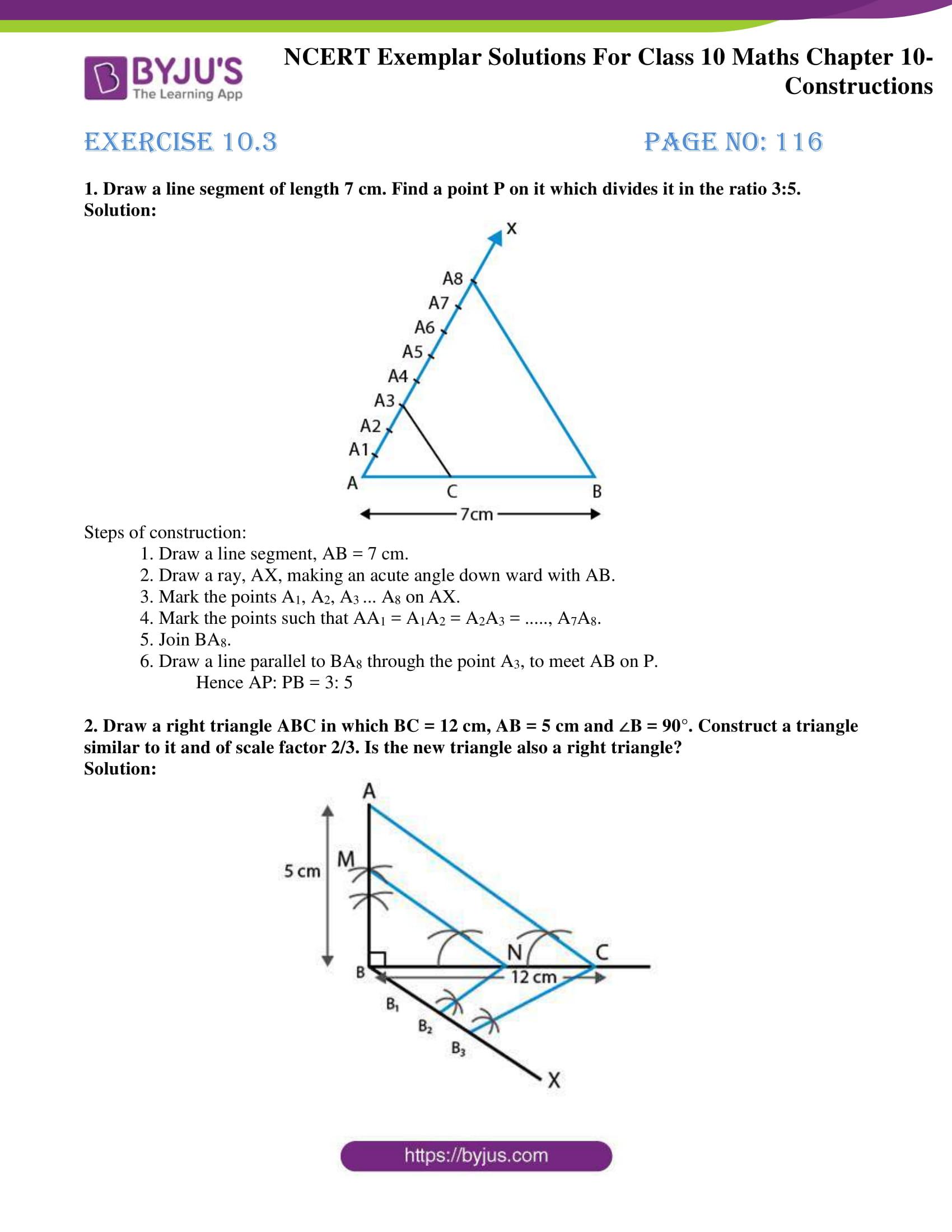 ncert exemplar solution for class 10 maths chapter 10