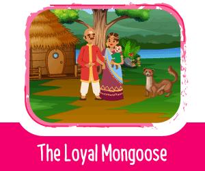 Panchatantra Story - The Loyal Mongoose