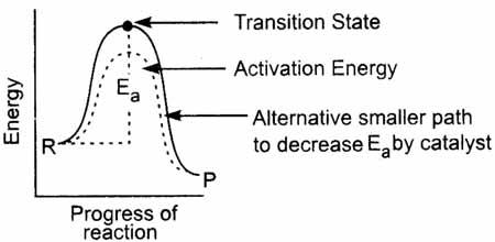 Positive Catalyst in Activation Energy Diagram