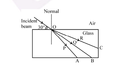 RBSE Class 10 Science Important Question No.21 Image