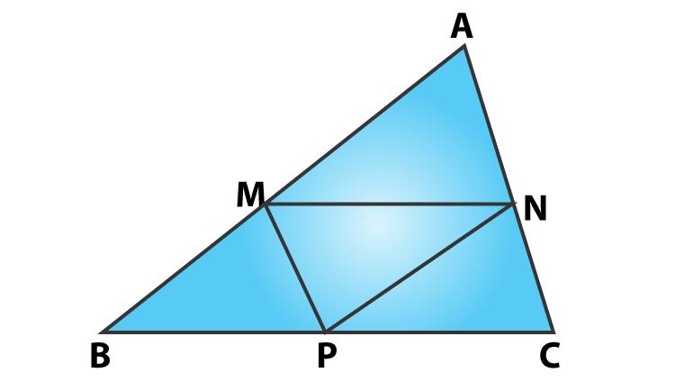 RD sharma class 9 maths chapter 14 ex 14.4 question 8