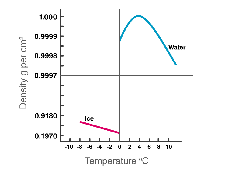 Properties of Water Anomalous Expansion of Water Graph