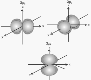 Boundary surface diagrams of the three 2p orbitals