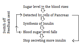 CBSE notes class 10 chapter 7 image - 8