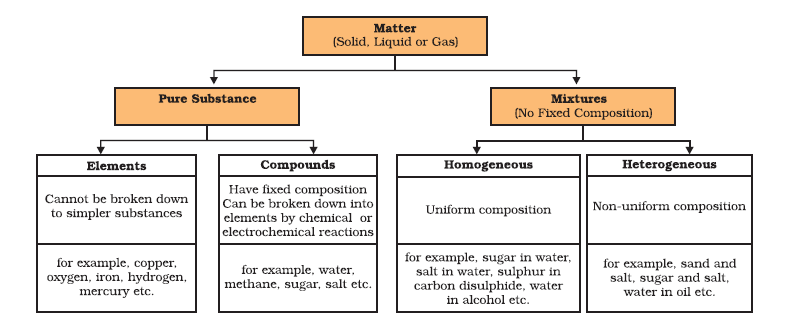 CBSE notes class 9 chapter 2 image - 1