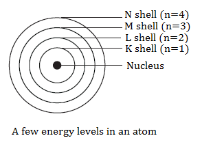CBSE notes class 9 chapter 4 image - 2