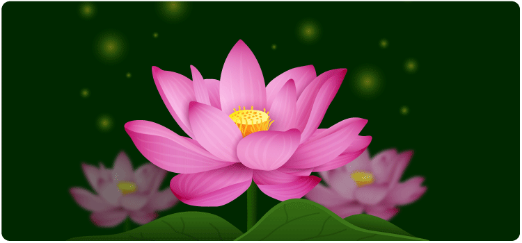 Essay On Lotus Flower For Class 2