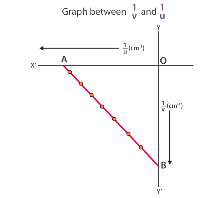 Graph between 1/u and 1/v is a straight line