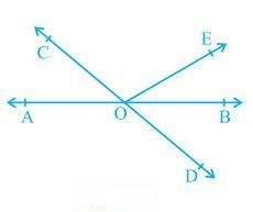 Lines and Angles Class 9 Example-1
