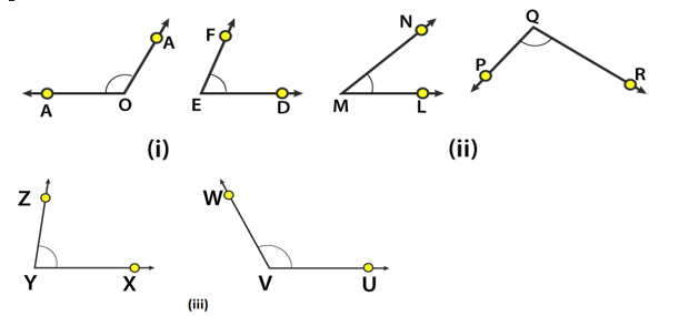 RD Sharma Solutions Class 6 Maths Chapter 11 Ex 11.1 Image 8