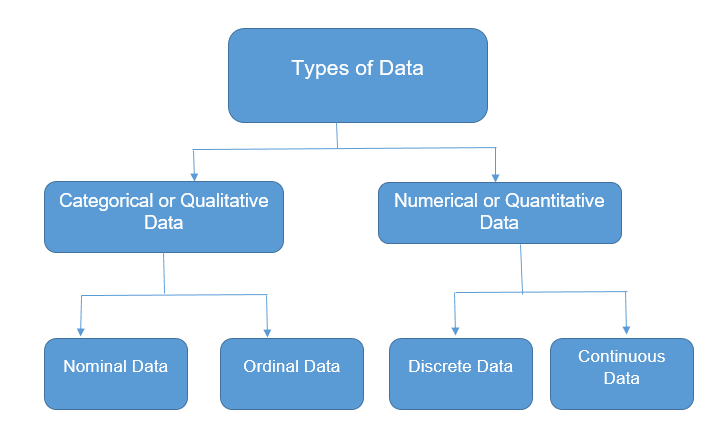 Types of Data in Statistics