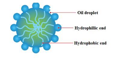 Oil-water Emulsion