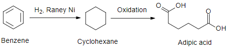 Raney Nickel Hydrogenation Catalysis
