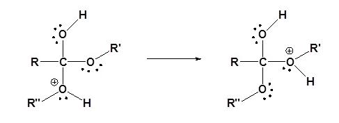 Transesterification Mechanism (Acid) Step 3