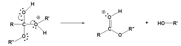 Transesterification Mechanism (Acid) Step 4