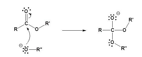 Transesterification Mechanism (Base) Step 1