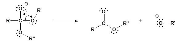Transesterification Mechanism (Base) Step 2