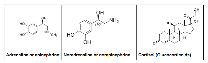 adrenaline, noradrenaline and cortisol structure